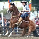 Tres Criollos uruguayos a la final del Freno de Oro