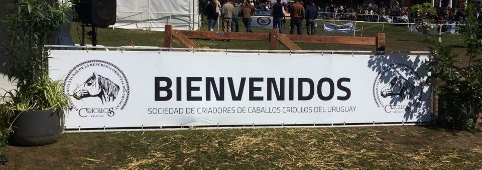 2017 Resultados Expo Prado