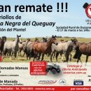 Remate liquidación de Selva Negra del Queguay