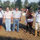 Pingo Viejo y El Chiripa fueron los ganadores