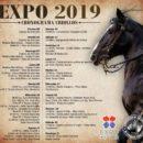 2019, Expo MRA en Paraguay
