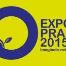 2015 Resultados Campeonato Paleteadas Argentinas Expo Prado