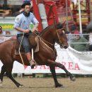 2015 Resultados Prueba Gallinal Expo Prado
