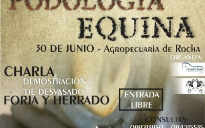 Jornada de podología equina en Rocha