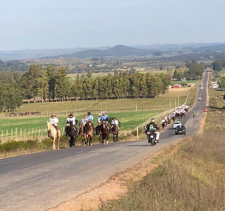 Vigencia y futuro de los caballos Criollos