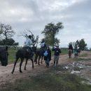 María Cecilia de Eduardo Mattiauda gana el Enduro de Criollos sobre 80 kilómetros