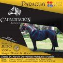 Charla del Dr. Martin Gurmendez en Paraguay