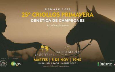 Remate 25o Criollos Primavera