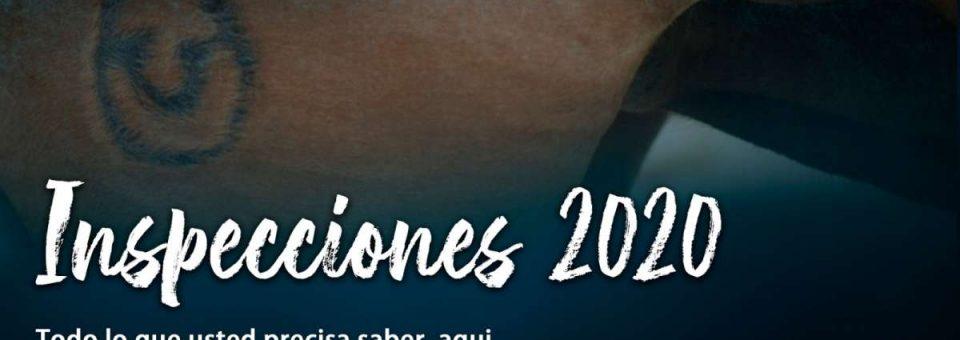 Inspecciones 2020
