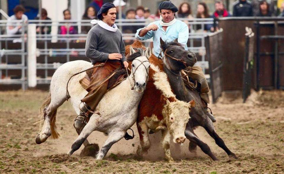 historia caballos