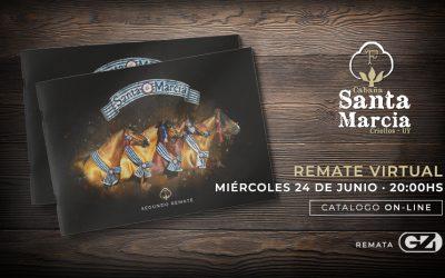 Remate Cabaña Santa Marcia