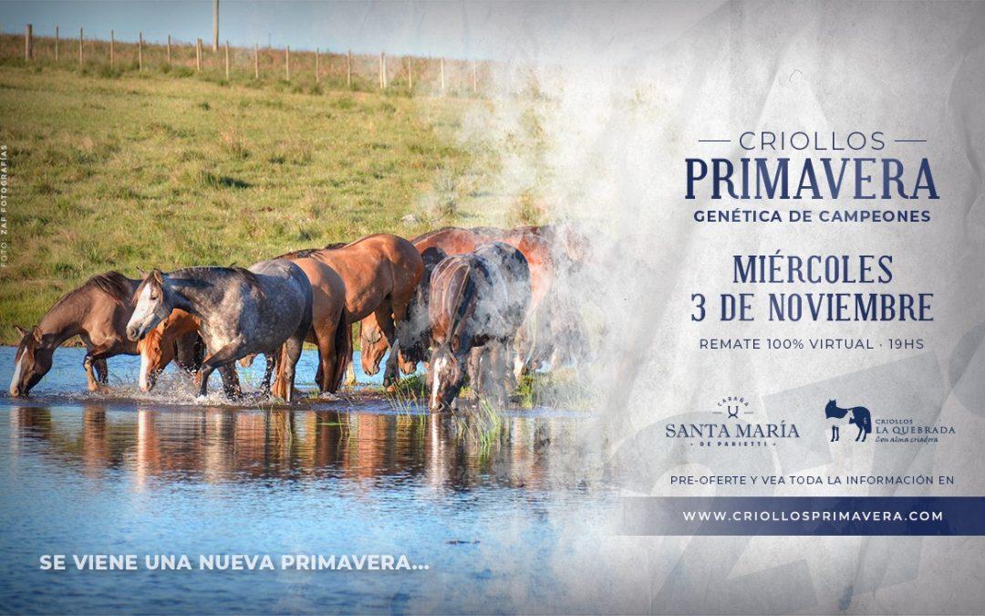 Remate Auspiciado | Criollos Primavera